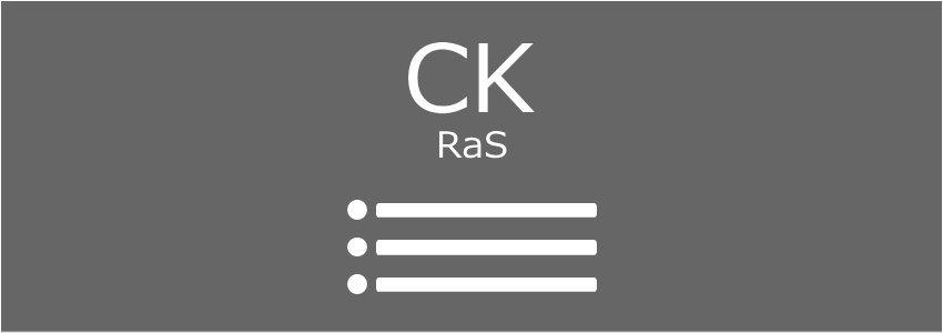 CK-RaSシンク一覧表