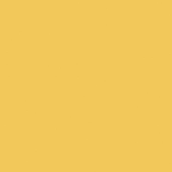 コーリアン・CORIANR ソリッドカラーシリーズ IP インペリアルイエロー