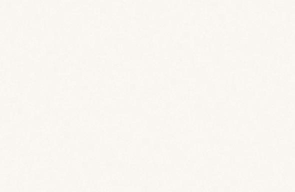 人工大理石ハイマックス:S21 ジミーホワイト