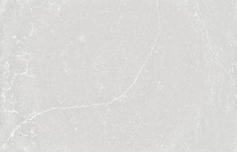 サイルストーン Silestone デザートシルバー Desert Silver