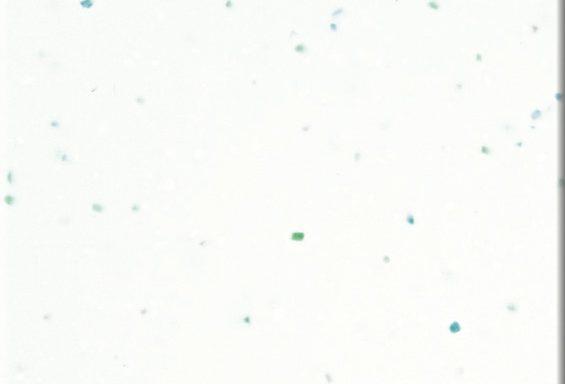 人工大理石BMC:EF アクアホワイト