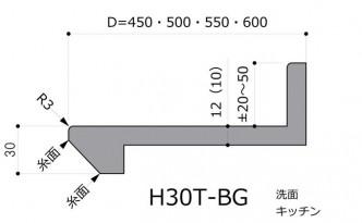 H30T-BG前垂れテーパバックガード付